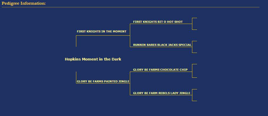 Hopkins Moment in the Dark